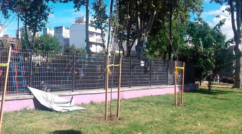 plaza dominguito