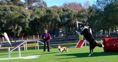 Comuna 15: Inauguraron el primer Parque para mascotas